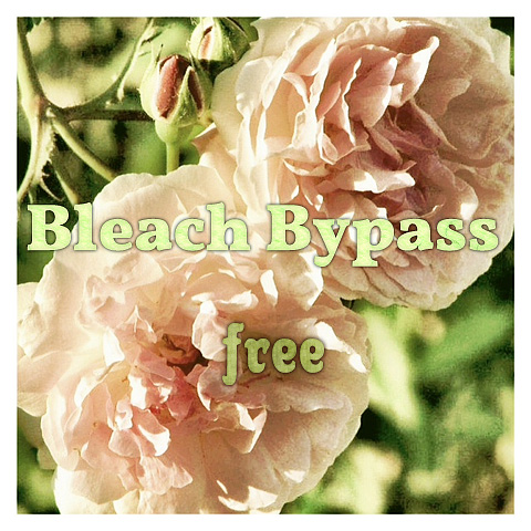 Bleach Bypass for iPhone Free