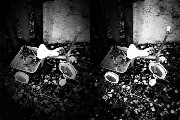 Noir Photo VS Dramatic Black & White