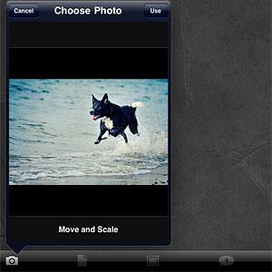 Halftone Juicy Bits iphone/iPad