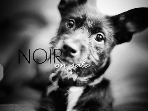 Noir Photo on Sale